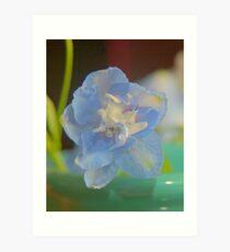 Floret Art Print