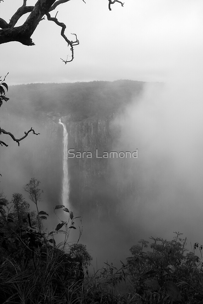 Wallaman Falls by Sara Lamond