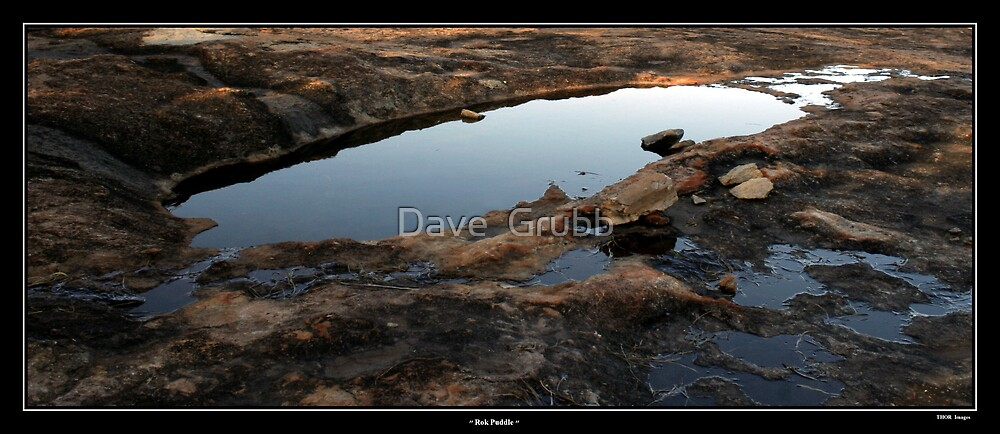 Rok Puddle by Dave  Grubb