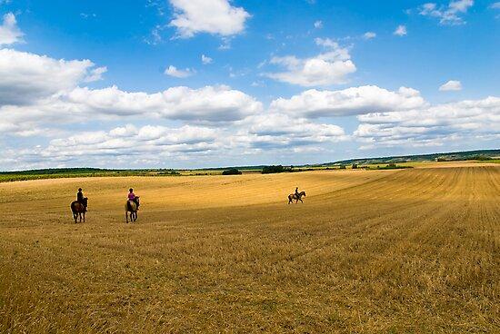 Three riders by Kurt  Tutschek