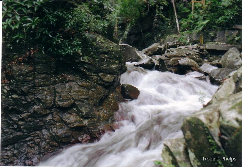Ragein' Waters by Robert Phelps