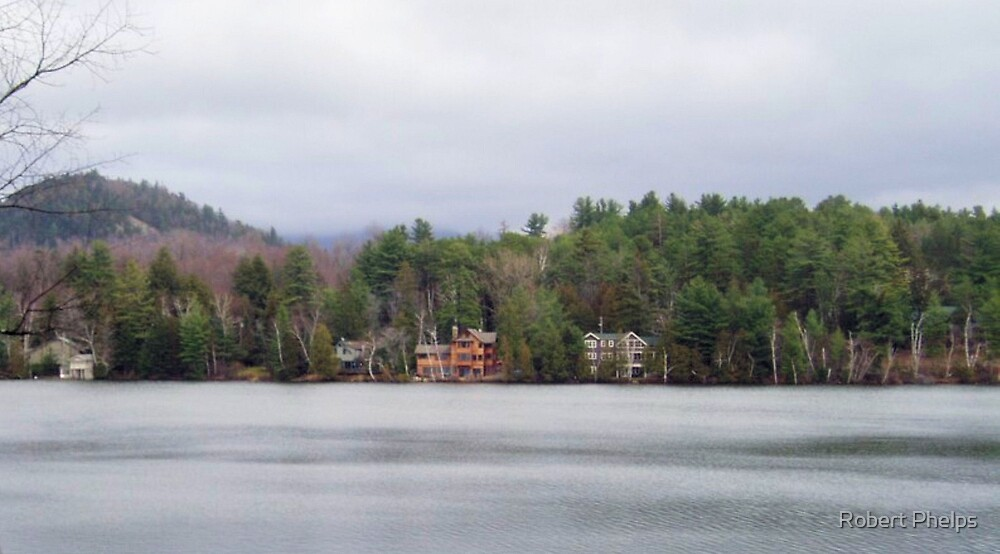 Adirondack Homes by Robert Phelps