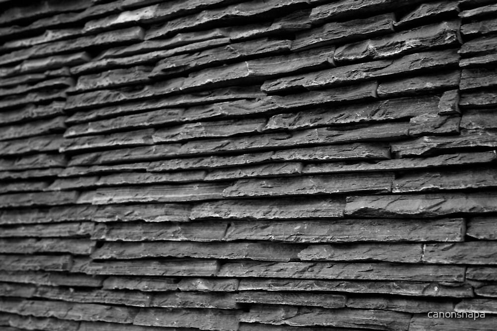 rock wall by canonsnapa