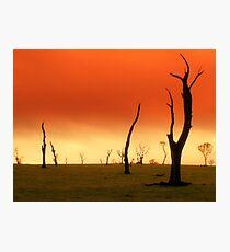 Waste Land... Photographic Print