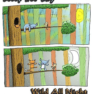 Sleep All Day - Wild All Night (Australian Wildlife) by eddcross
