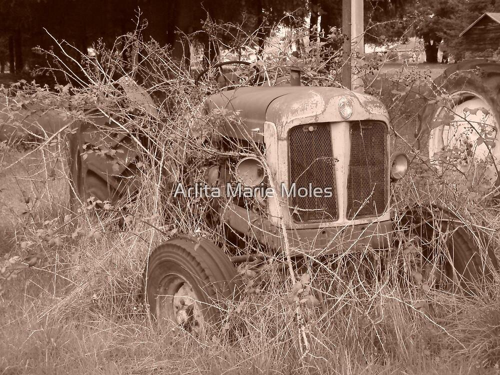 Tractor 2 by Arlita Marie Moles