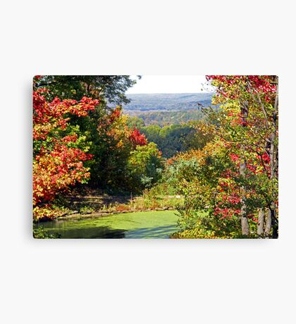 Autumn Begins Canvas Print