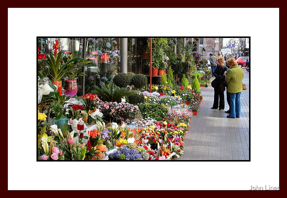 The Flower Seller Las Ramblas by John Lines