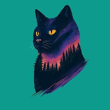 cat by motymotymoty
