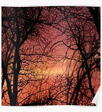 Nebraska Sunset  Poster