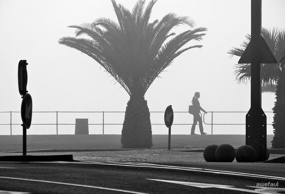 Morning stroll by awefaul