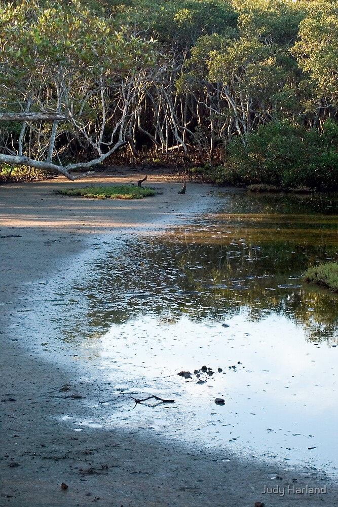 Nudgee Mudflats by Judy Harland