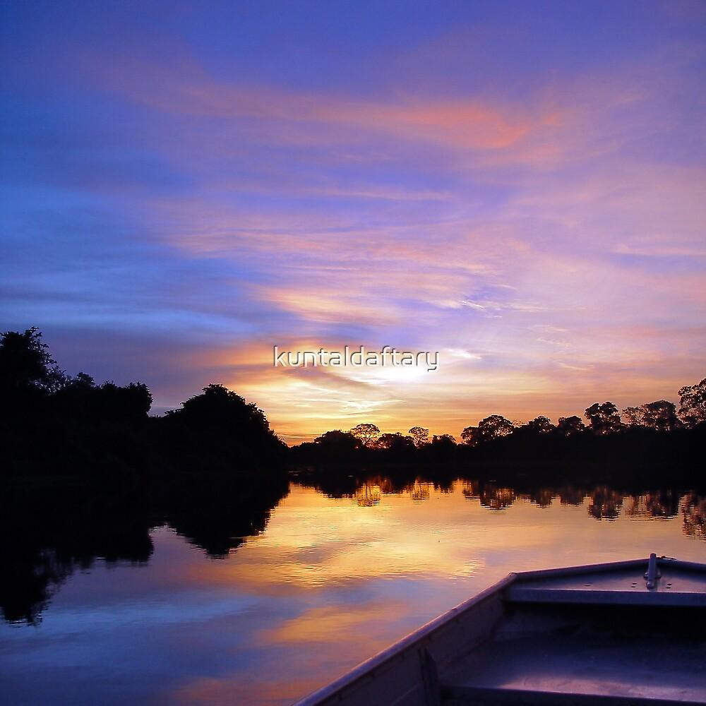 Pantanal Sunset 2 by kuntaldaftary