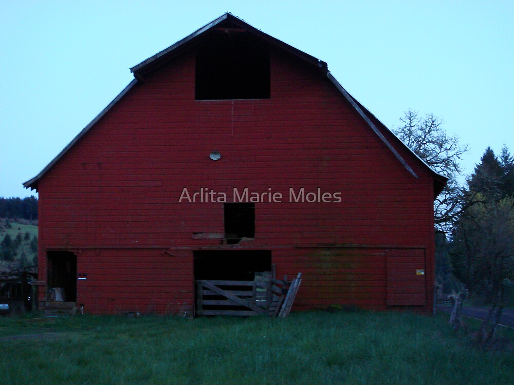 Barn by Arlita Marie Moles
