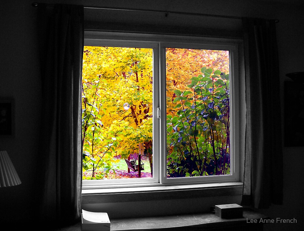 Through my Window by Lee Anne French