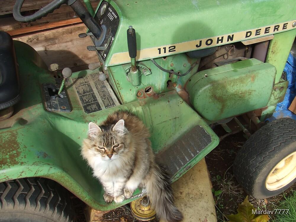 Yes, This is MY John Deere by Mardav7777
