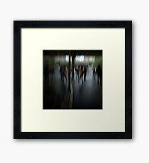 Haighs Corner Framed Print