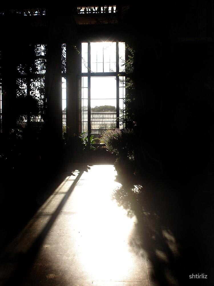 The Through Light by shtirliz