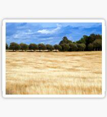 Beautiful wheat field landscape Sticker