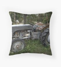 Old Grey Throw Pillow