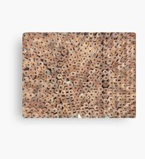 Do you need a penknife? Canvas Print
