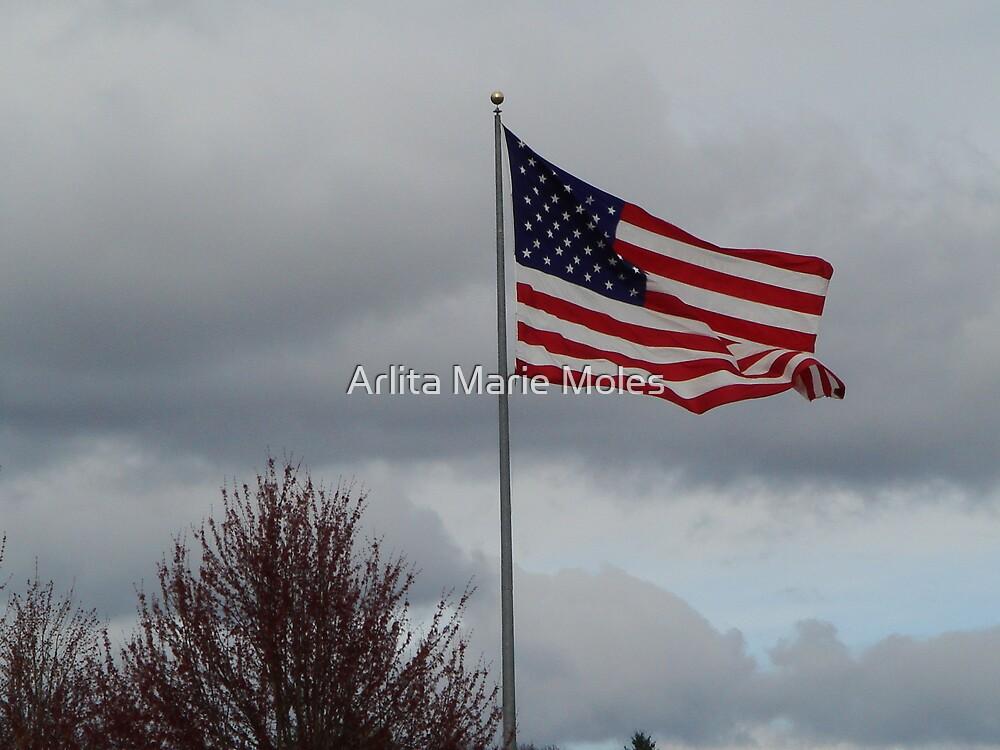 American Flag by Arlita Marie Moles
