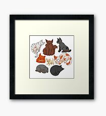 Cats! Framed Print