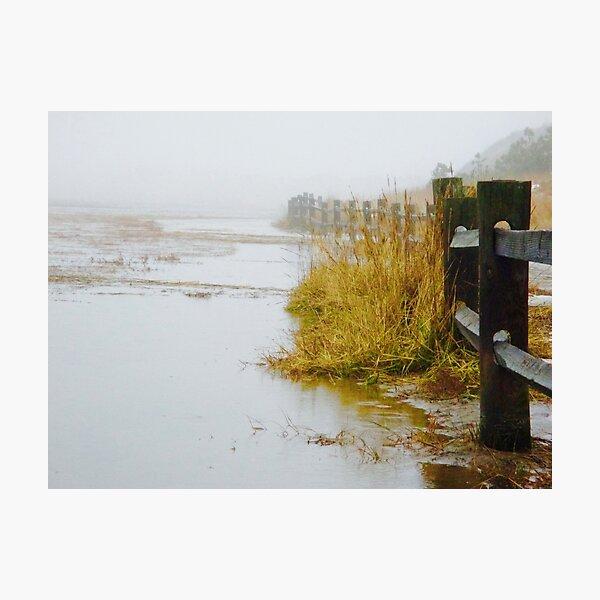 Cape Cod Fog Photographic Print