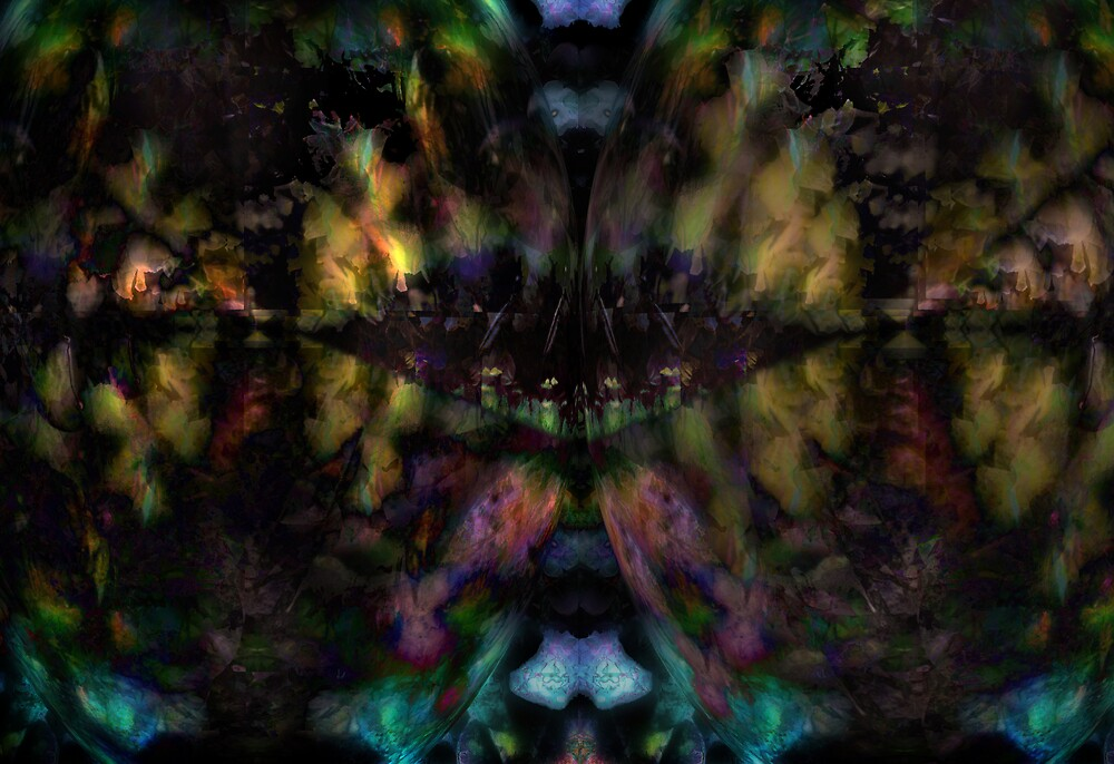 The Peacock Forest by Stephen Jackson