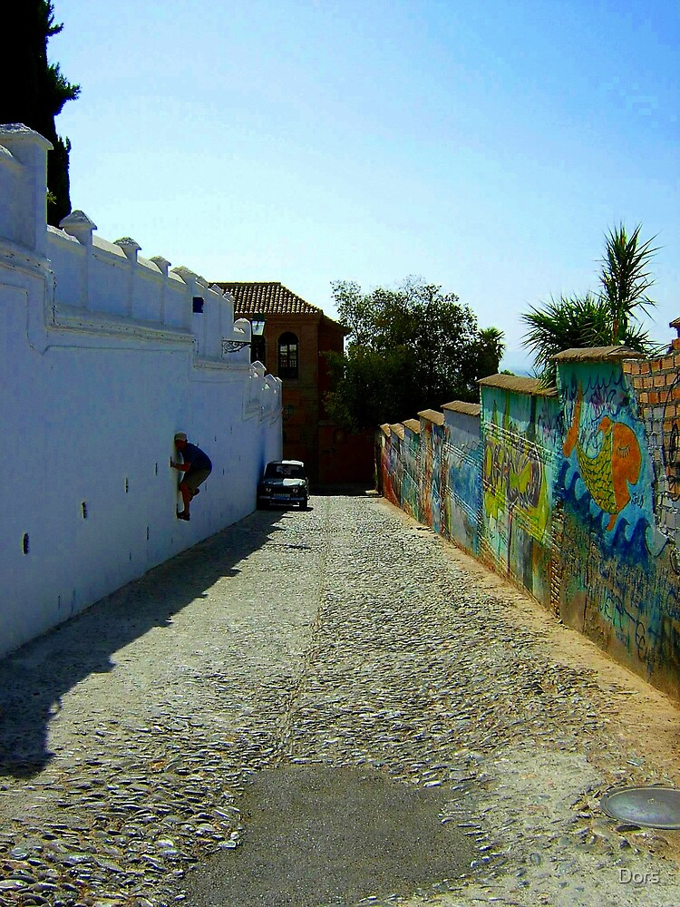 Wall Dors by Dors
