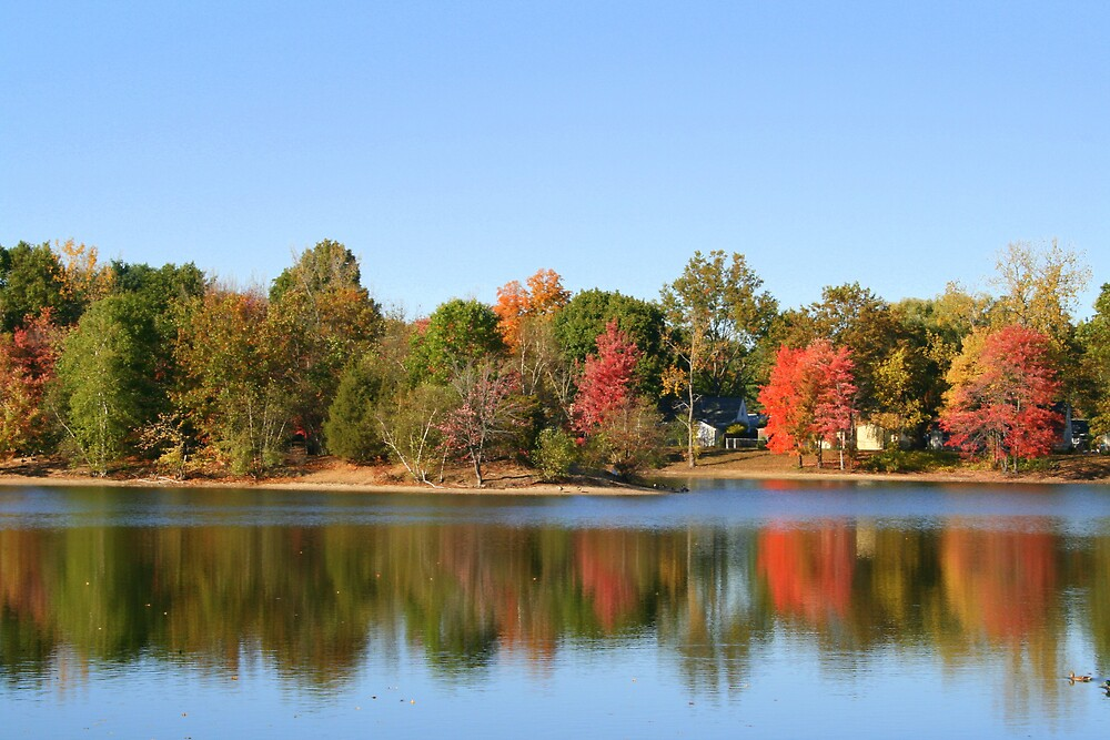 Fall Reflections by Melissa Arel Chappell