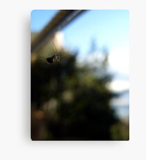 Floating spider Canvas Print