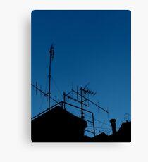 Antennas invasion Canvas Print