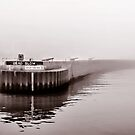 North Wall In Fog Toned - Lyme Regis by Susie Peek
