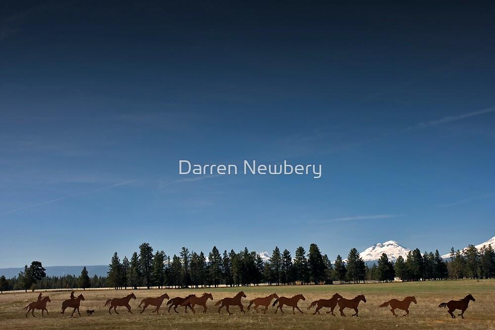 Metal Horse Scuplture by Darren Newbery
