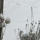 Winter Art by dragonflypoet