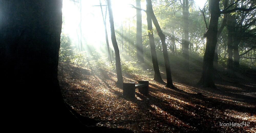 judy woods 4 by IronHead42