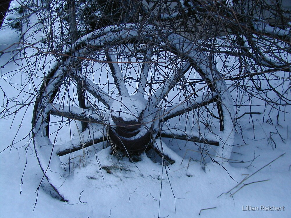 Winter Wagon Wheel by Lillian Reichert