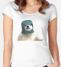 Adorable Polar Bear Cub in helmet Women's Fitted Scoop T-Shirt