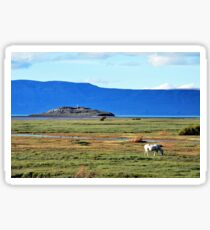 Peaceful Afternoon in El Calafate Sticker