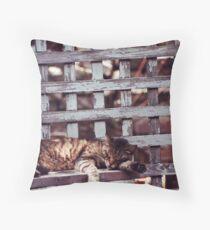 Backyard Nap Throw Pillow