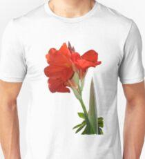 Canna Lili T-Shirt