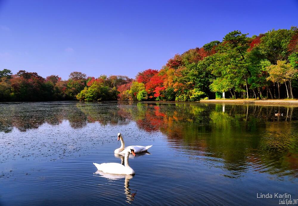 Swan Lake by Linda Karlin