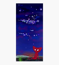 Yarny's Wide World Photographic Print