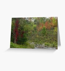 Oshawa Creek Greeting Card