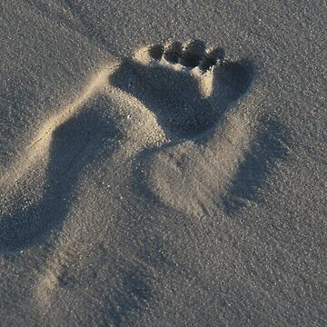 Footstep by norgan
