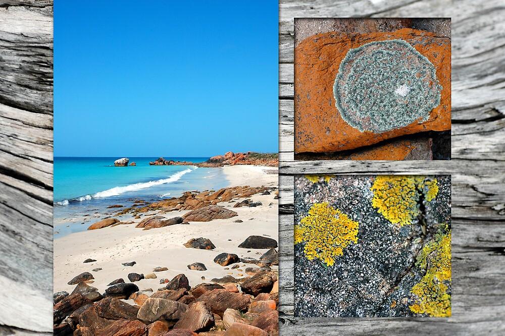 Beach Textures by samatar