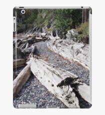 Fallen Beach iPad Case/Skin