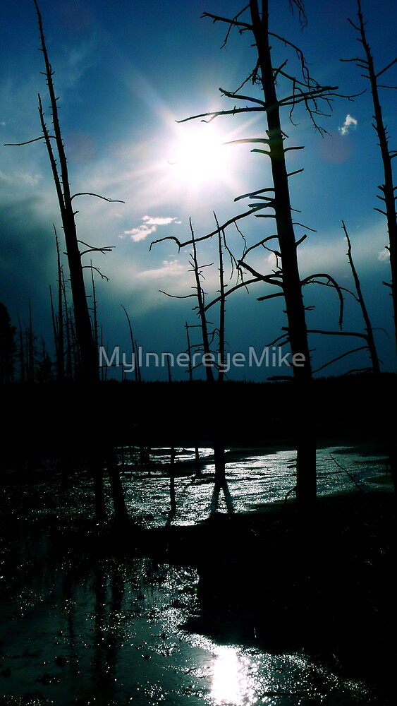 #231  Blue Sky In Yellowstone by MyInnereyeMike