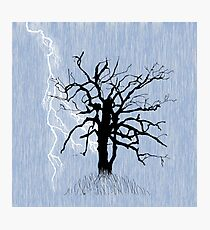 Gnarled Tree and Lightning Photographic Print